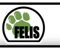 Felis Creations